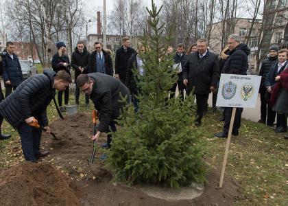 Бауманцы и политехники посадили дерево дружбы