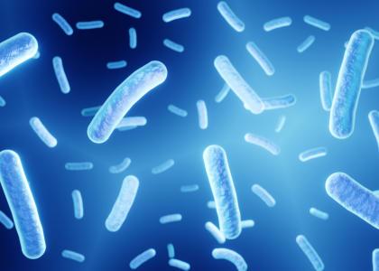 Видеотрансляция семинара «Становление кишечной микробиоты и её коррекция у детей (лекция)»